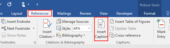 How to Insert a Caption for an Image in Microsoft Word