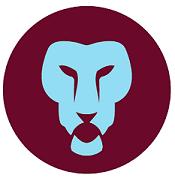 aston villa blog salifou lion