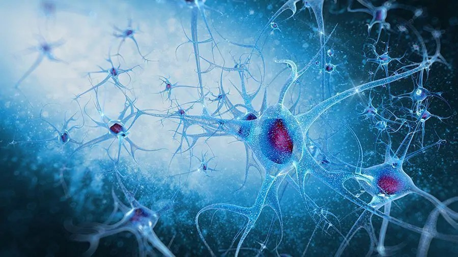 alzheimers-disease-research