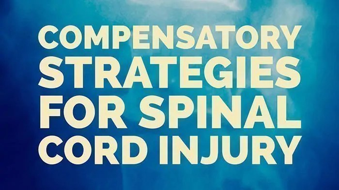 share-ot-for-spinal-cord-injury2
