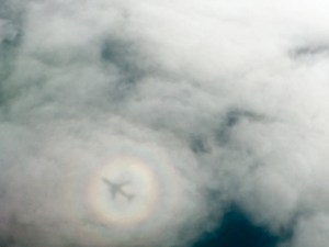 l'incroyable ombre de mon vol!