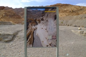 trail Mosaic Canyon