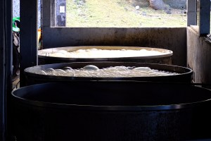 distillerie de rhum de Longueteau à Capesterre-Belle-Eau .