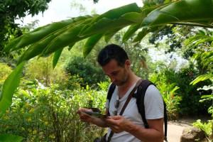 jardin de Deshaies