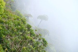 point de vue du Trou de fer sous le brouillard