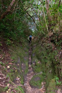 randonnée Tamataka