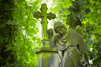 Grief and Loss/Bereavement