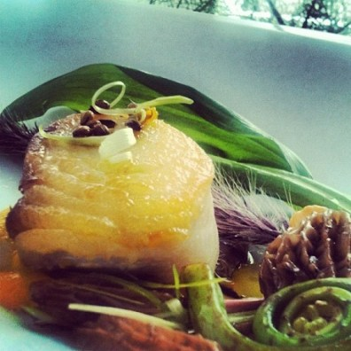 2000 calorie diet halibut