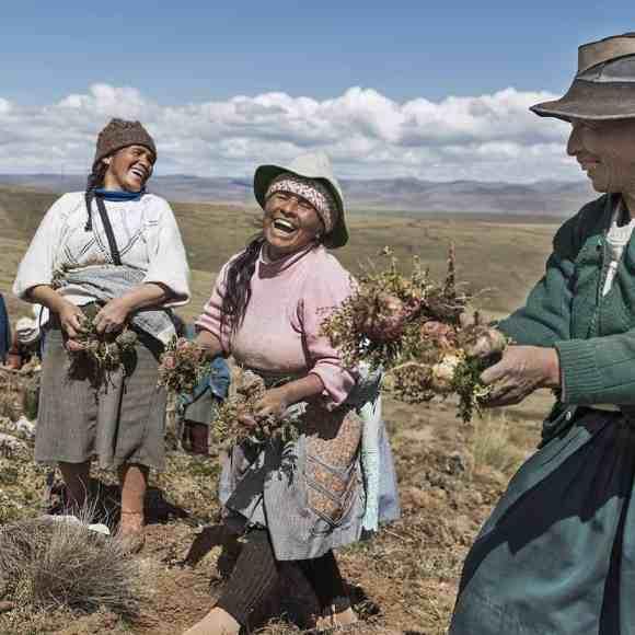 Maca Powder Grown In Peru