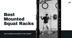 Folding Wall Mounted Squat Racks