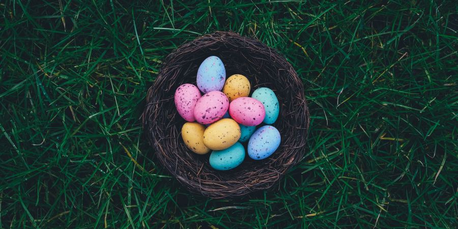 Best easter 2018 decorations gifts for gardeners my plant place best easter 2018 decorations gifts for gardeners negle Image collections