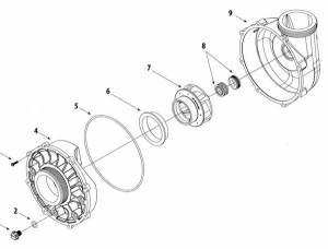 Waterway Viper Pump Parts Diagram | Parts List