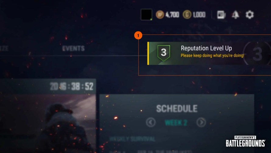 reputation level pubg