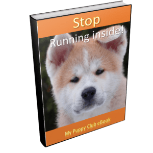 Stop puppy running in my home
