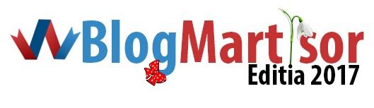 concursuri bloggeri