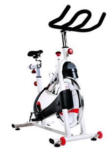 Sunny Spin Bike SPD 1509 belt drive Peloton alternative