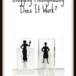 Blogging Anonymously: Does It Work?