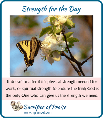It doesn't matter if it's physical strength needed for work, or spiritual strength to endure the trial; God is the only One who can give us the strength we need.