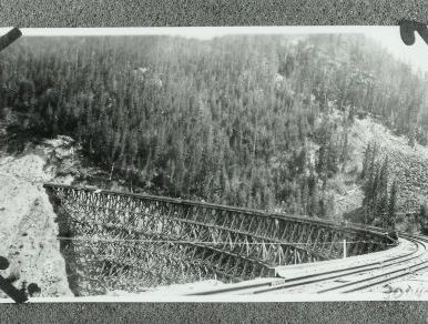 Pooley Creek. Trestle #6 in the early days before it was rebuilt as a steel structure.