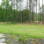 Front Yard in Rent-to-Own Home at 11101 Glen Arm Road, Glen Arm, MD 21057
