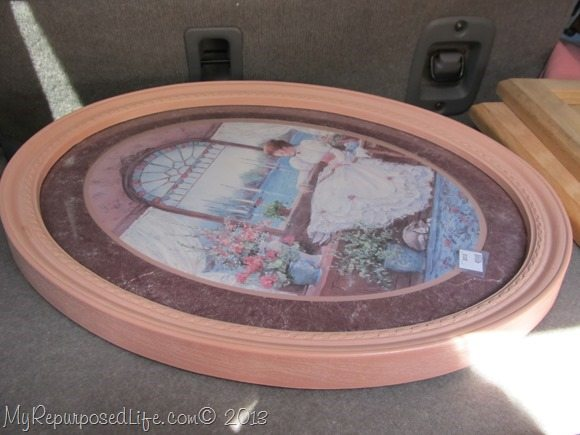 plastic oval pink frame