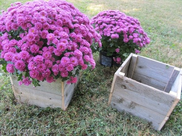 rustic planter cover hides plastic flower pots