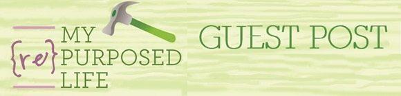 guest post banner 1