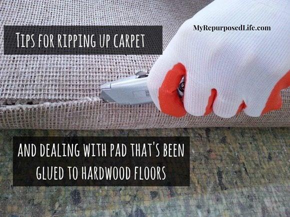 ripping-up-carpet-glued-padding
