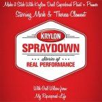 Krylon Spraydown-Make it Stick