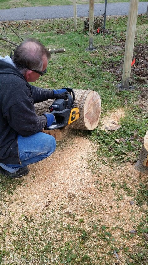 cutting wood slice with chain saw