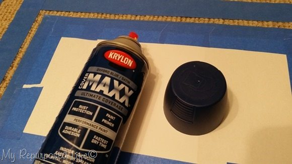krylon maxx spray paint