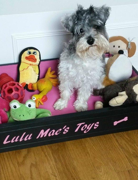 lulu mae loves her customized repurposed drawer toy box dog bed MyRepurposedLife.com