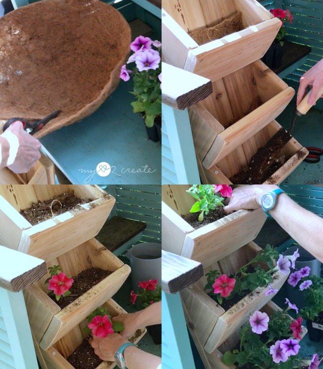 planting flowers in cedar planter