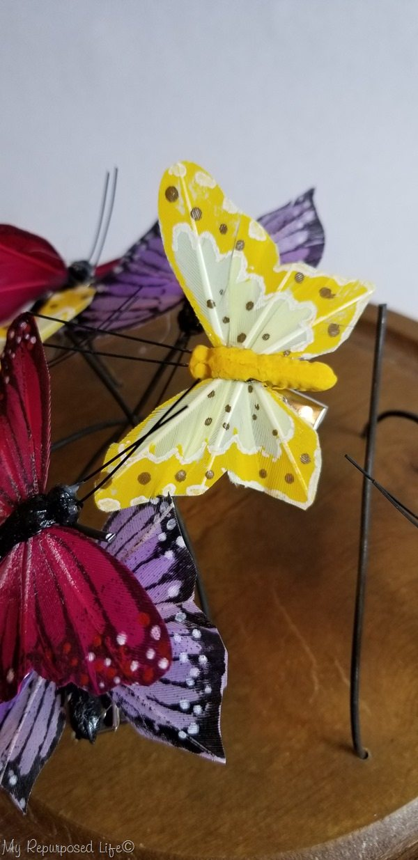 test fit paper butterflies in cheese cloche
