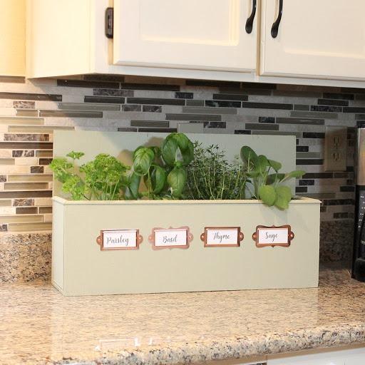 kitchen-counter-herb-garden
