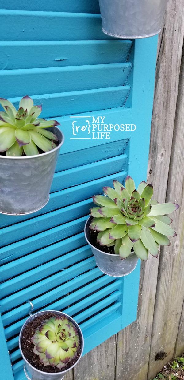 Repurposed Shutter Vertical Garden Succulent Planter My
