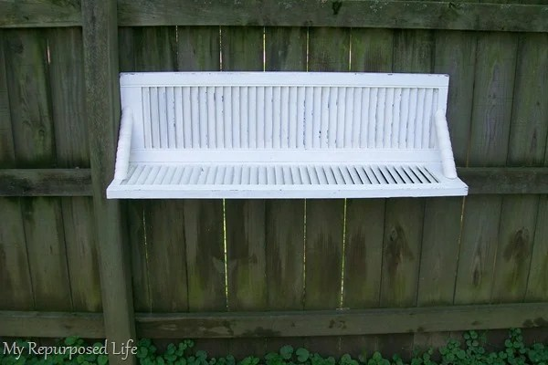 white chippy shutter shelf hanging on weathered privacy fence