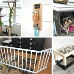 Pet Projects – DIY ideas for your furbabies