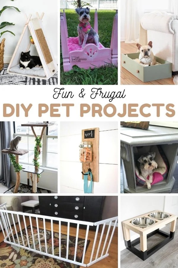 Pet Projects DIY Fun and Frugal My Repurposed Life