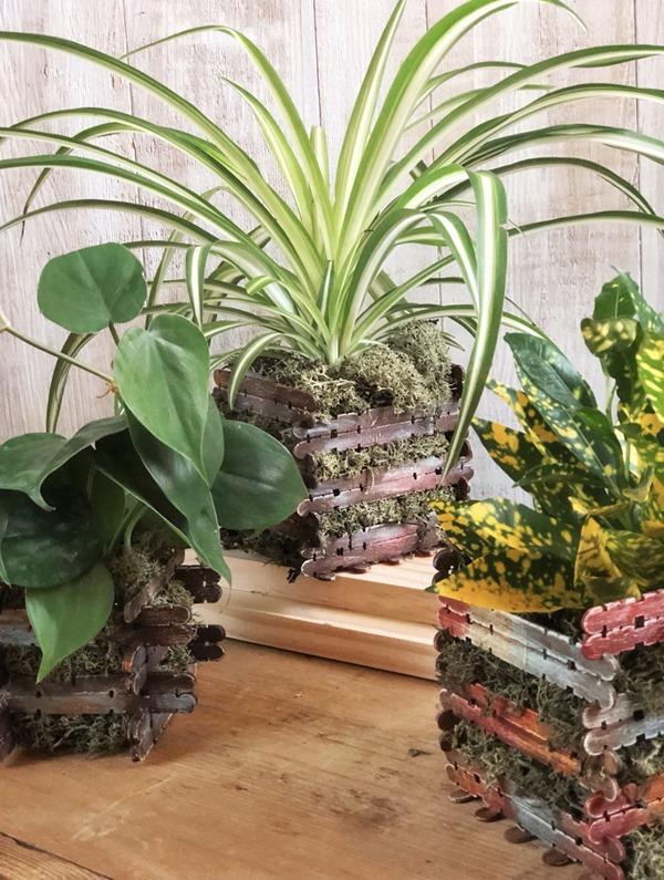 craft stick moss planters