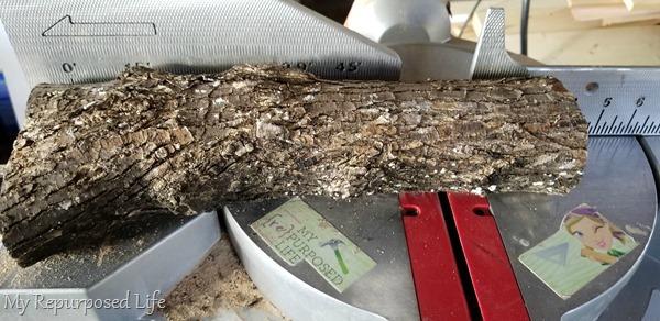 cut log project on miter saw