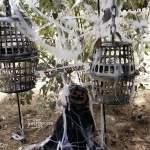 Skeleton Cages