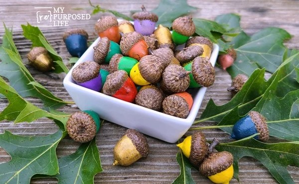 painted acorns in a dish MyRepurposedLife