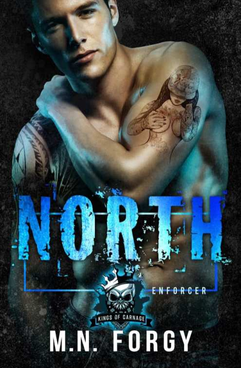 North by M.N. Forgy