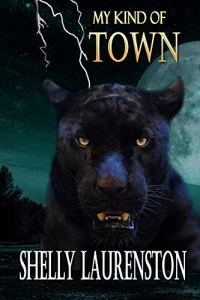 My Kind of Town by Shelly Laurenston
