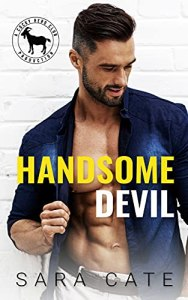 Handsome Devil by Sara Cate