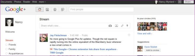 Google Plus Early Observations
