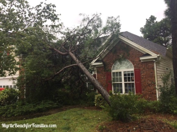 Hurricane Matthew, tree on roof, Hurricane Matthew aftermath