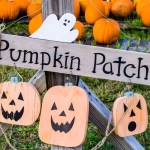 Myrtle Beach Pumpkin Patches, Corn Mazes & Hayrides