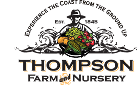 Drive-in Movie Series Thompson Farms Friday Nights